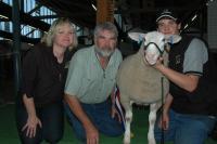 2007 Royal Adelaide Show. Champion ewe (ewe lamb). Wingamin was also Most Successful Exhibitor at Bendigo, Hamilton and Adelaide. (316 entries - 38 exhibitors at the 2007 Royal Adelaide Show)