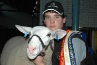 Wingamin 070816 (ewe lamb) Champion & Reserve Supreme Shortwool ewe 2007 Royal Adelaide Show