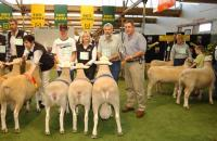 1st Breeders Group 2006 Royal Adelaide feature Show