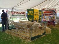 Best Terminal Display at the Karoonda Farm Fair in 2004