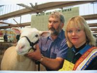 Champion ewe at the 2003 Royal Adelaide Show. Wingamin was also Most Successful Exhibitor. Total of 16 ribbons won.