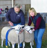 Champion and Reserve Champion ewes at Gawler 2002.