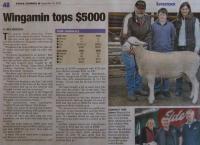 2010 South Australian Foundation Breeders Sale. Wingamin stud rams top the sale @ $5,000 x 3