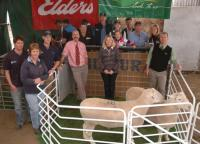 2011 South Australian Foundation Breeders Sale. Top price sale rams at $11,600 & $10,500. First in the pair class at the Royal Adelaide Show.