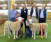 The White Suffolk breed celebrated it's 20th anniversary at the 2011 Royal Adelaide Show with record entries and exhibitors and the winners and judge from the inaugural show in 1991.