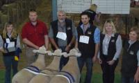 Most Successful Exhibitor Presentation with president Julie Wiesner at the 2011 Royal Adelaide Show