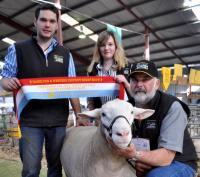 Wingamin 101961 Grand Champion ram Hamilton Sheepvention in 2011