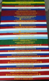 TRIFECTA'S broad ribbons from 2012