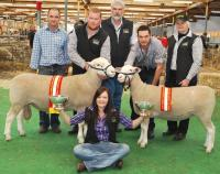 Supreme Prime Lamb & Maternal Breeds Ram and Ewe of the 2012 Royal Adelaide Show
