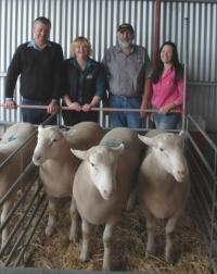 Top price flock rams 3 x $2,000 at our Annual On-Property sale in 2013.