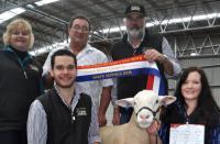 Wingamin 122714 Grand Champion ram and Supreme White Suffolk Exhibit at Bendigo in 2013