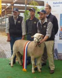 Senior Champion ram presentation with sponsors at the 2015 Royal Adelaide Show