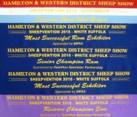 Hamilton Sheepvention show results 2016