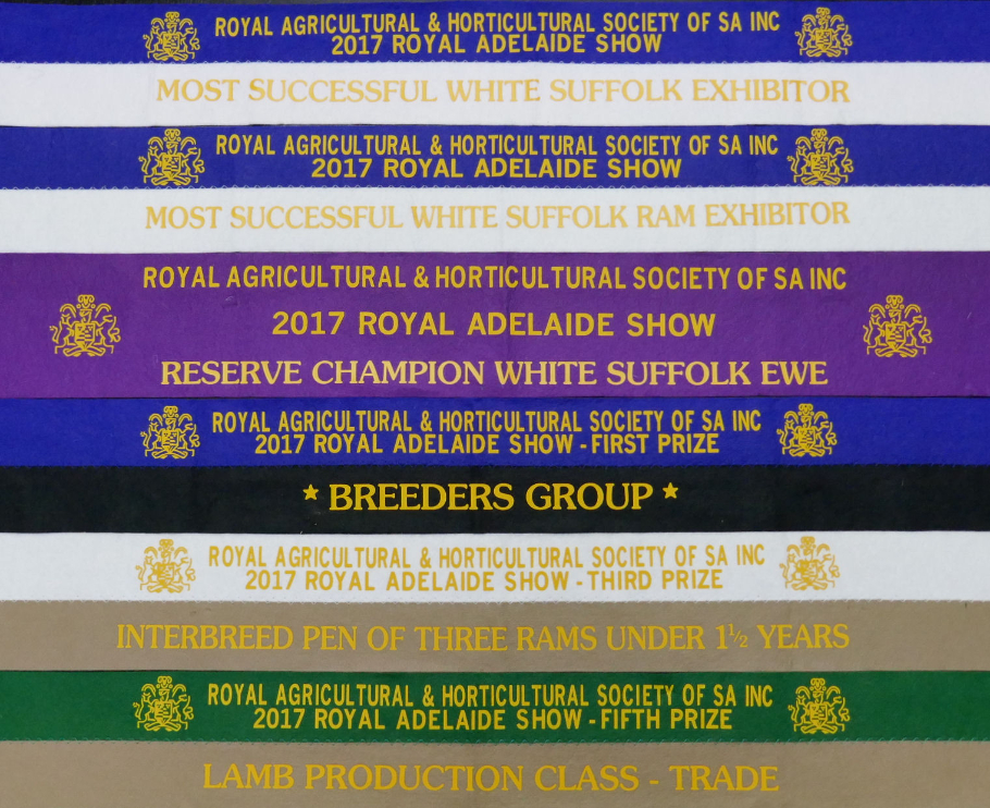 2017 Show Results