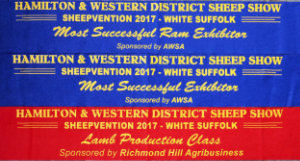 Hamilton Sheepvention 2017 results
