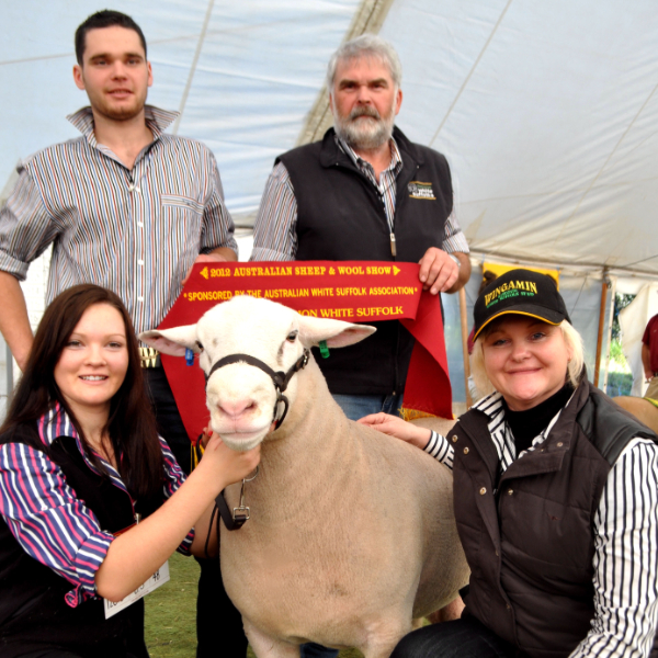 Wingamin Trifecta - Supreme Champion Bendigo 2012